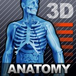3-D body diagram