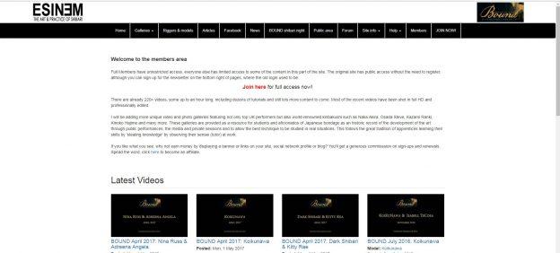 ESINEM web site new page