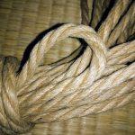 Amazing new jute shibari rope