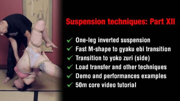 Part XII of 'Suspension Techniques'