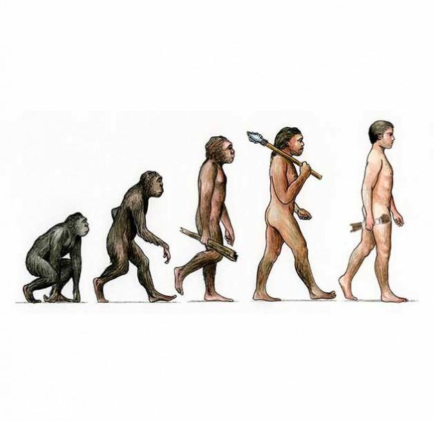 Evolution of kinbaku